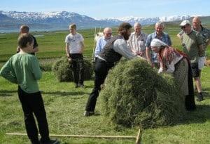Old Traditional Farming, Cruise day tour in Akureyri