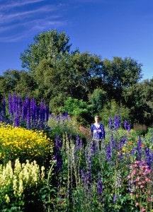 The most northern Botanical Garden in Iceland, Akureyri